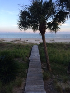 cape san blas view from beach