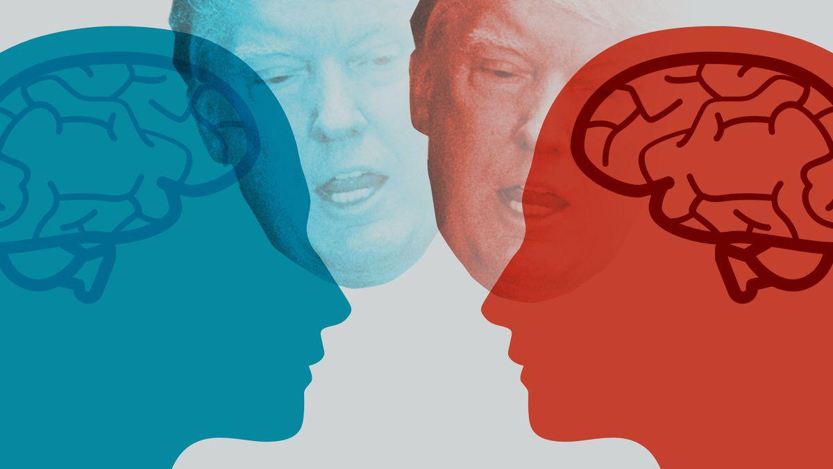 Brain of Trump Voter